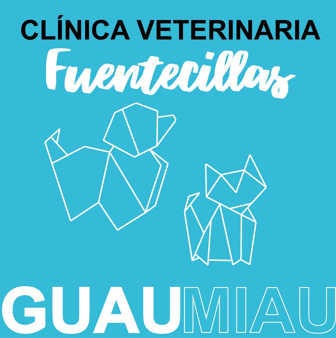 Clinica Veterinaria Fuentecillas