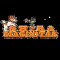 Shira Mascotas