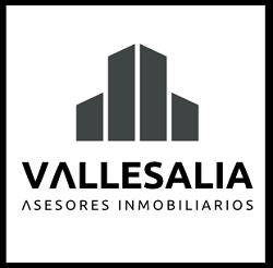 Vallesia Asesores Inmobiliarios