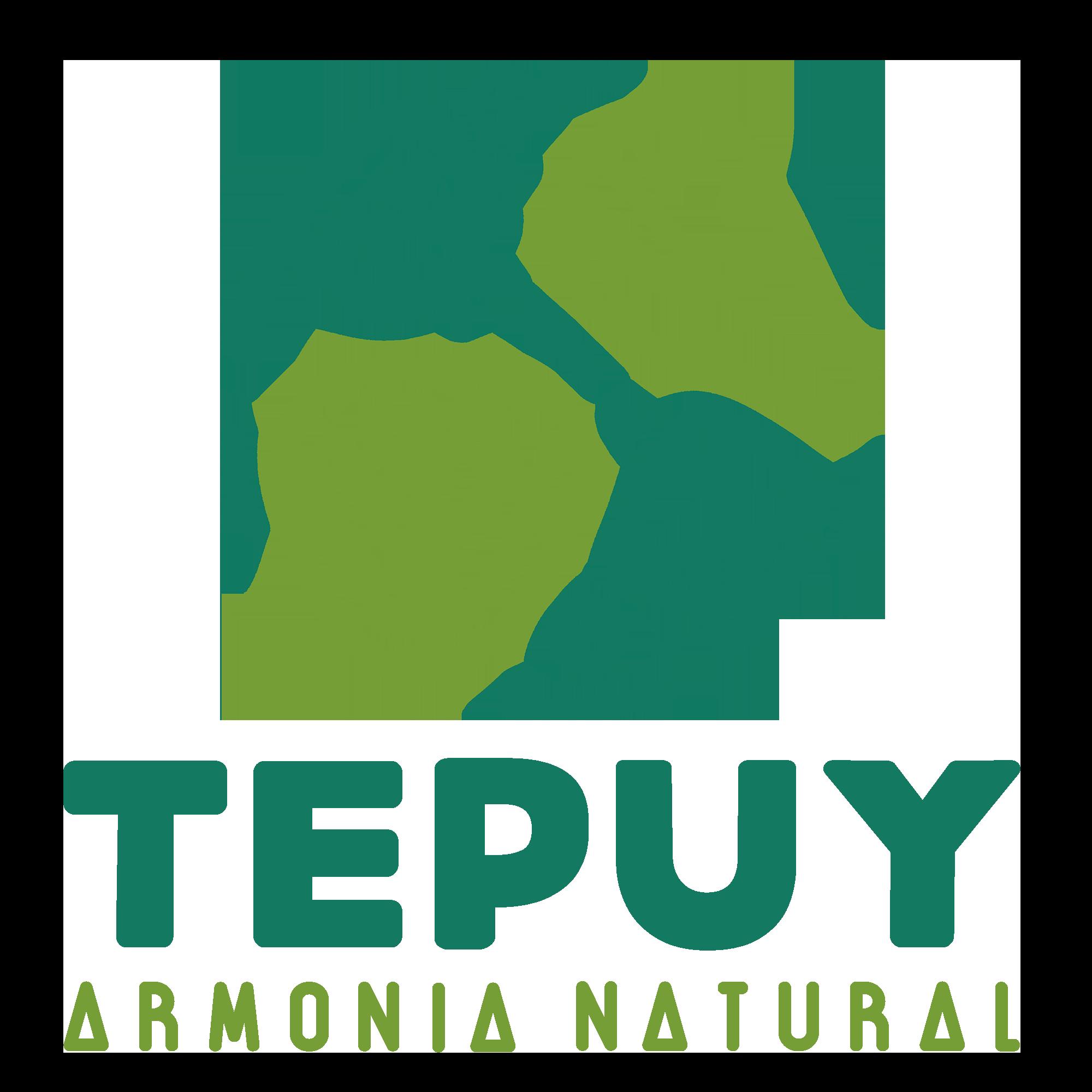 Centro Tepuy