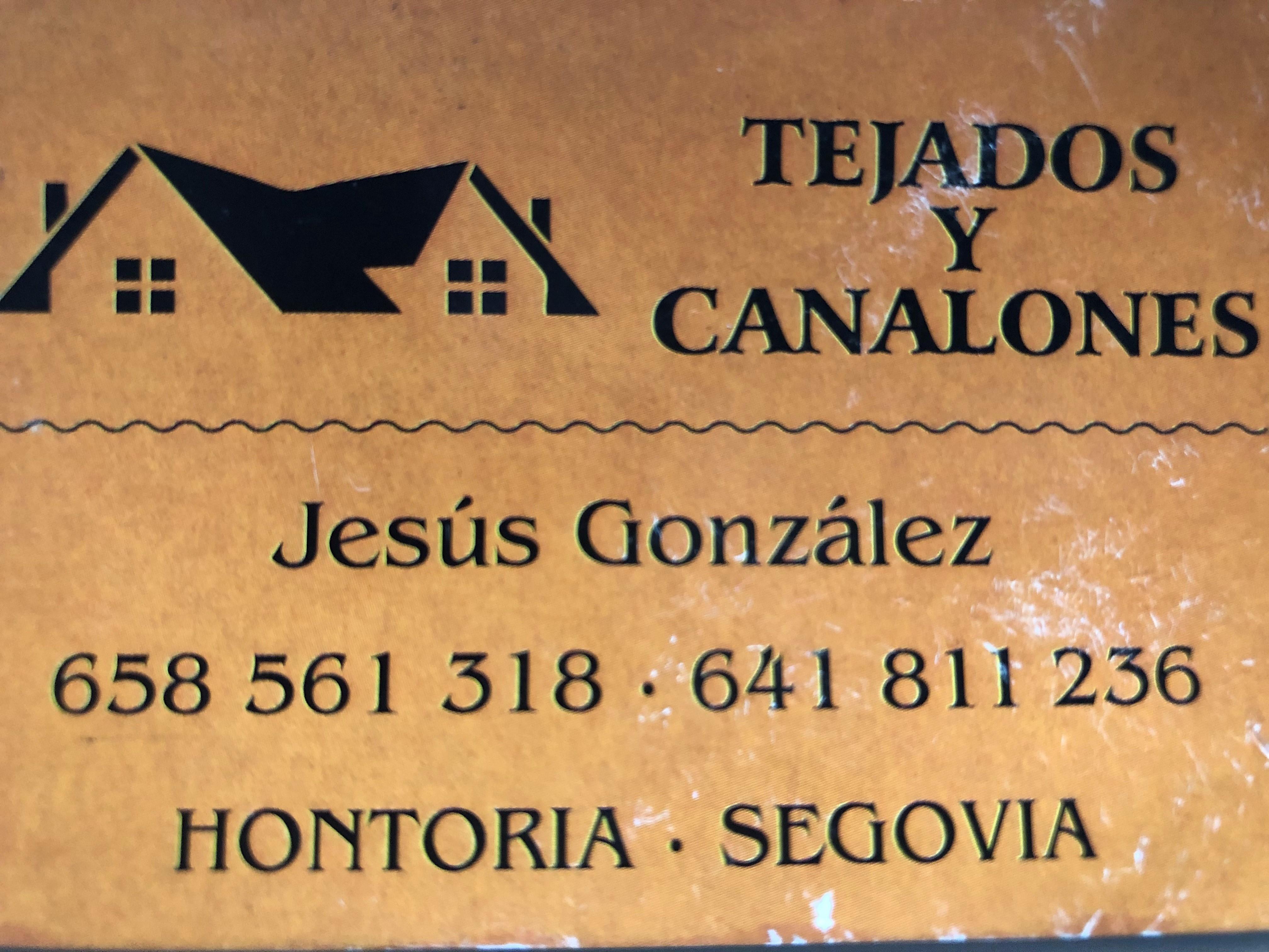 TEJADOS Y CANALONES JESUS GONZALEZ