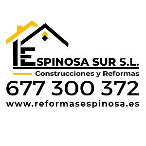 Reformas Espinosa Sur