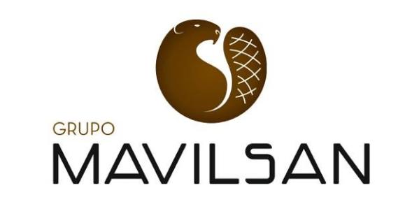 Grupo Mavilsan