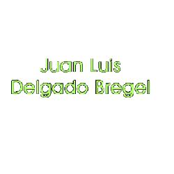Juan Luis Delgado Bregel
