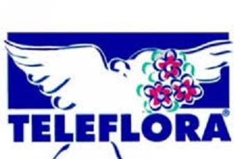 Floristería Hortensia