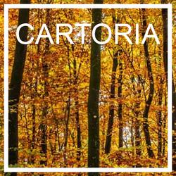 Imagen de Cartoria