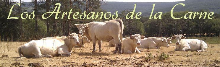 Imagen de Carnicería L. Medrano