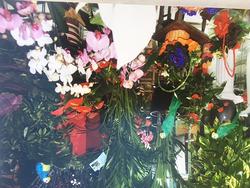 Imagen de Floristería Flowers