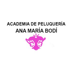 Academia De Peluquería Ana María Bodí