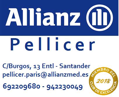 Allianz seguros Pellicer