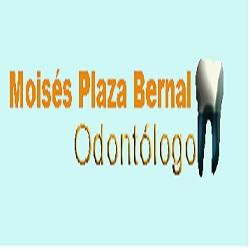 Moisés Plaza Bernal