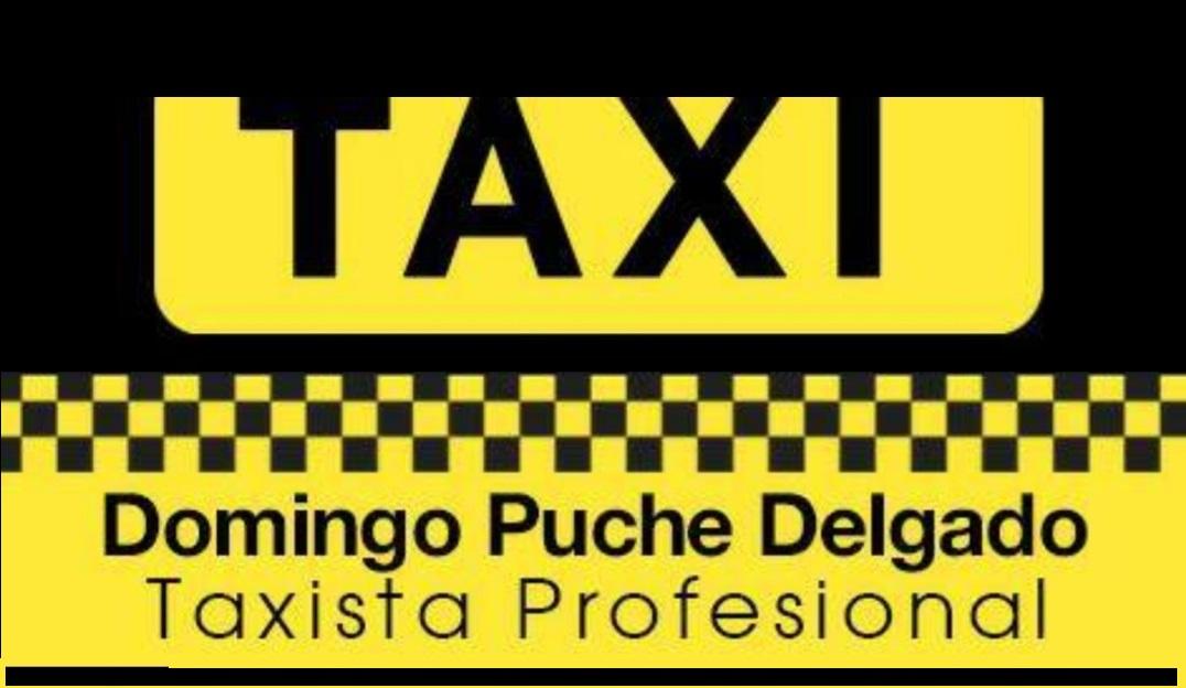 Domingo Puche Delgado