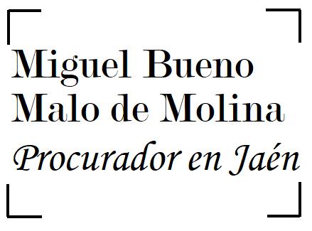 Procurador Miguel Bueno Malo De Molina