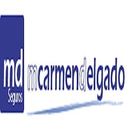Agencia de Seguros Vinculada MCARMEN DELGADO