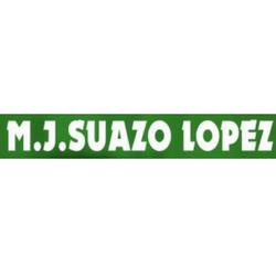 M. J. Suazo López