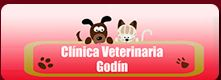 Clínica Veterinaria Godín