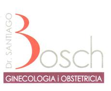 Bosch Arbusé, Santiago