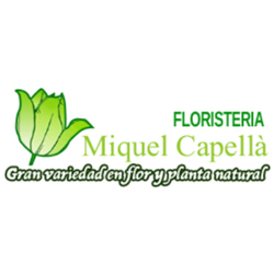 Floristería Miquel Capellà